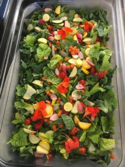 partners forum salad
