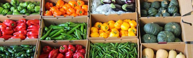 Boxed veggies_banner
